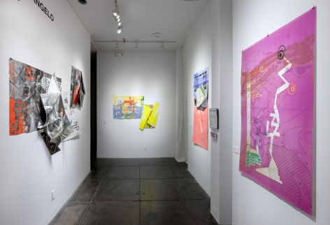 CARMON COLANGELOHere be Dragons[centre gallery installation view]photography courtesy of Mike Smith