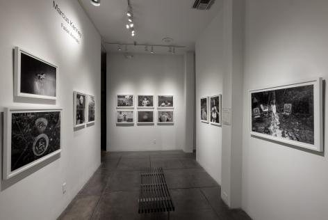 MARCUS KENNEY III Fallen Animals, [Middle Gallery Installation View]