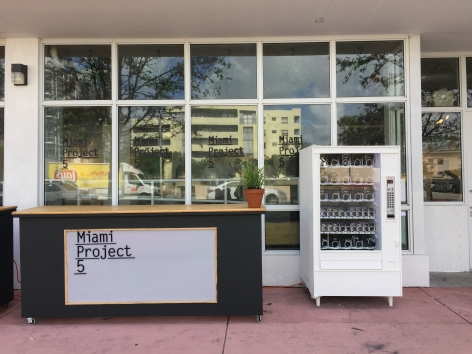 MIAMI PROJECT 5, exterior | Installation View