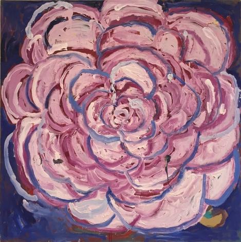 MARGARET EVANGELINE Shot Camellia, 2010