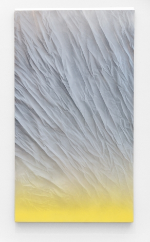 BONNIE MAYGARDEN Sun Screen, 2014