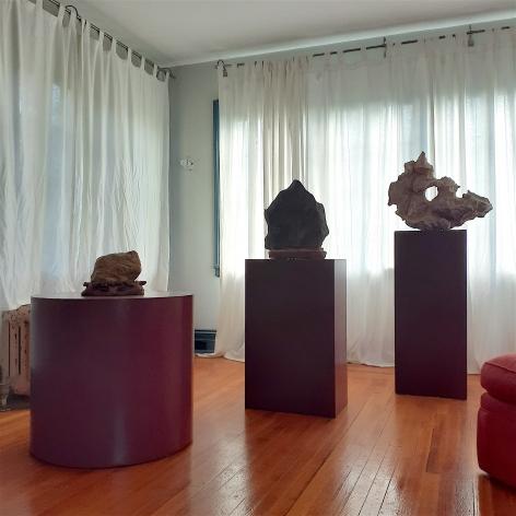 Scholar's Rocks Installation