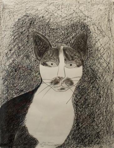 The Adolescent Cat #2 1983