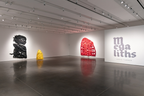 Installation of artwork by Vadis Turner at UCCS.