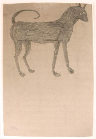 Image of Grayhound
