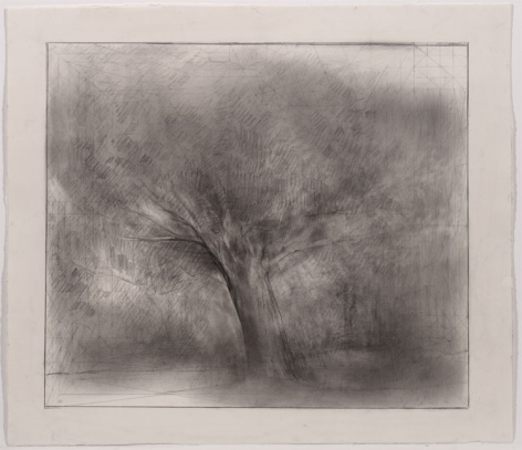 UNTITLED, 2007, Pencil on paper
