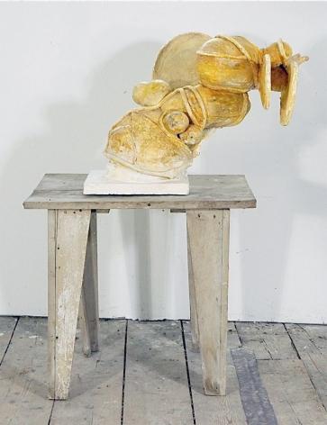 Yellow Mange, 2011, Mixed Media