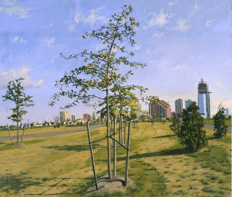 Image of New Plantings in Millenium Park, New Towers in the Distance