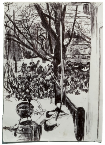 Looking Out Window, Snow and Grill, 2008