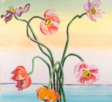 Marks - Pastel Poppies