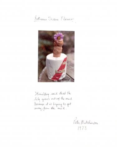 Hutchinson - Bathroom Tissue Flower