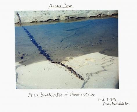 Hutchinson - Mussel Dam