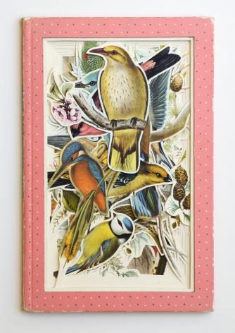 James Allen  German Birds, 2021