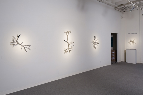 Eric Franklin at Laura Russo Gallery October 2014