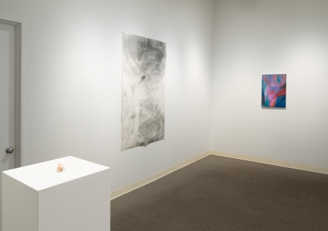 Drinking the Reflection-curated by Elizabeth Malaska-Russo Lee Gallery-Portland-november 2019-Installation view 03