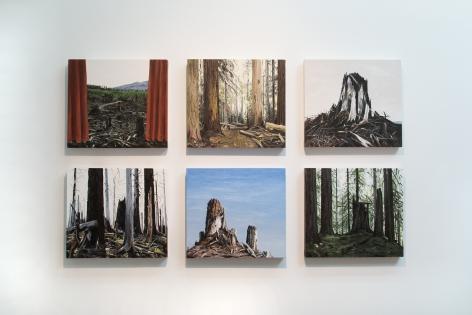 Michael Brophy Installation June 2016