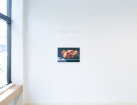 Sherrie Wolf | Juxtapositions | Installation View | img_04