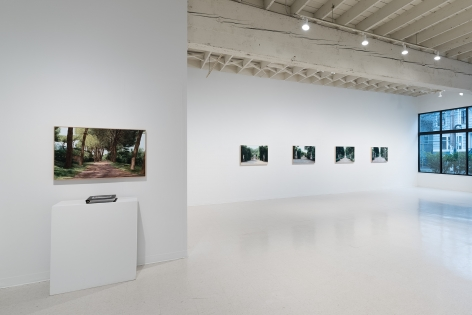 Tom Fawkes | Recent Work | March 4–27, 2021 | Installation view 06