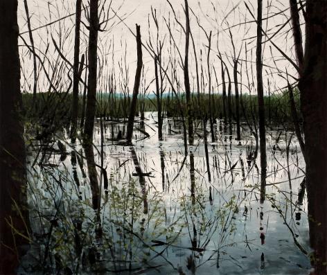Brophy - Shallow Lake II