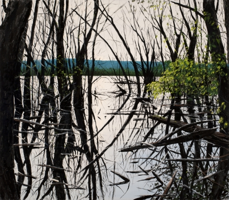 Brophy - Shallow Lake I