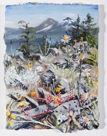 Russell - Macduff Mountain Blooms
