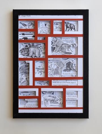 James Allen  Oregon Fossils, 2021