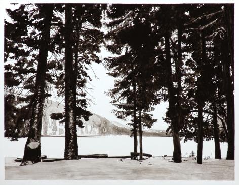 Wolf - Suttle Lake