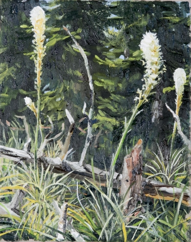 Russell - Bear Grass