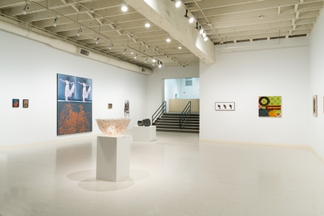 A Necessary Festival   Installation View   January 2018   Russo Lee Gallery