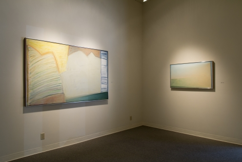 Michael Dailey at Laura Russo Gallery May 2015