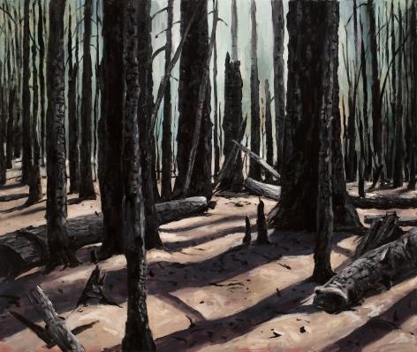 Michael Brophy - Herman Creek