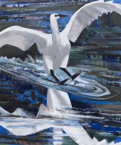 Parker - Swan Landing