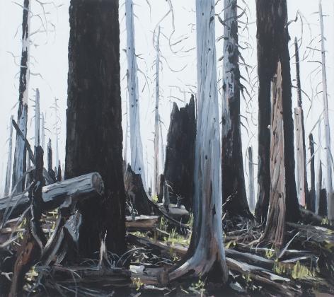 Brophy - Burn