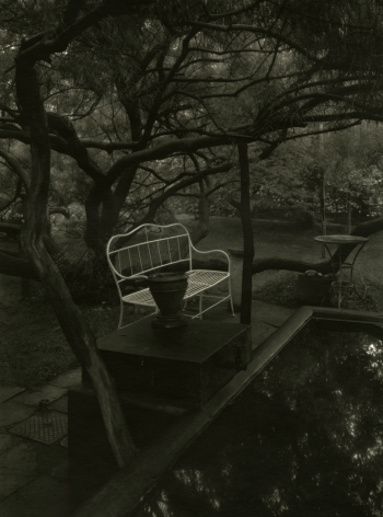 Josef Sudek - In the Magic Garden, c.1958 - Howard Greenberg Gallery