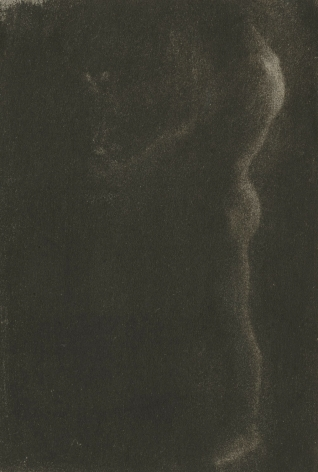 Edward Steichen - The Victor, 1900 - Howard Greenberg Gallery - 2019