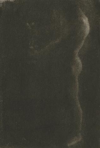 Edward Steichen - The Victor, 1900 - Howard Greenberg Gallery - 2019