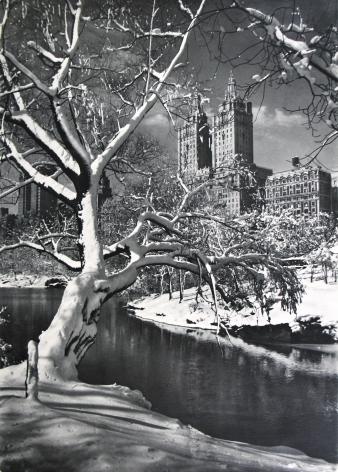 Adolf Fassbender - - Howard Greenberg Gallery
