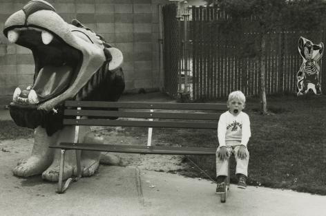 "Dennis Stock - ""Dennis the Menace Park"" in Monterey, 1968 - Howard Greenberg Gallery"