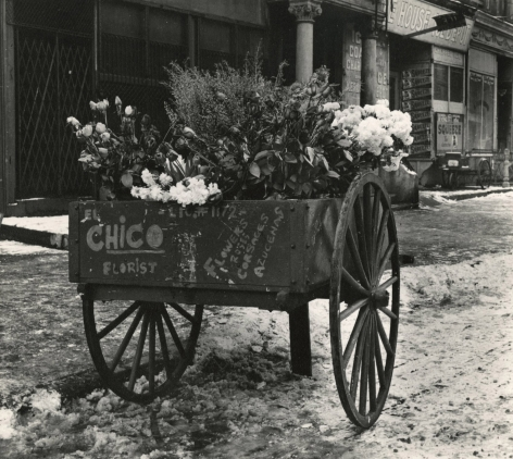 Leo Goldstein - Florist's Cart, East 100th Street, 1951- Howard Greenberg Gallery