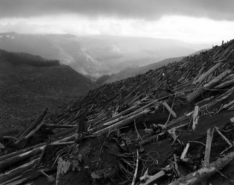 Frank Gohlke: Mount St. Helens 2005 howard greenberg gallery