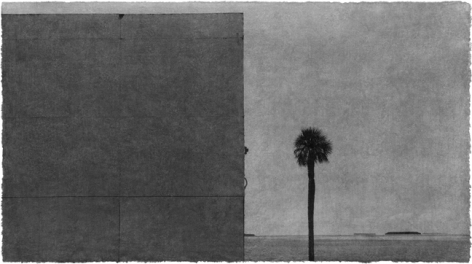 Jungjin Lee: Recent Projects - Works from Everglades - Howard Greenberg Gallery - 2015