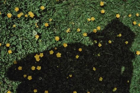 Akris x Vivian Maier