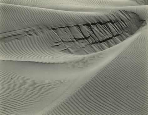Edward Weston - Dunes at Oceano, 1936 - Howard Greenberg Gallery