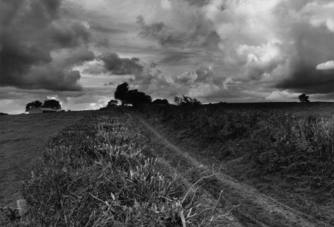 Don McCullin, A Bridle Path in my Village, Somerset, early 1990s, Howard Greenberg Gallery, 2019
