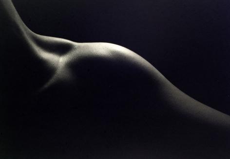 Kenro Izu - Still Life #773, 1998 - Howard Greenberg Gallery