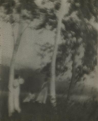 George H. Seeley - White Trees, c.1910 - Howard Greenberg Gallery - 2019