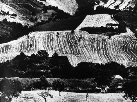 Mario Giacomelli - Presa di Coscienza sulla natura, 1970-76 - Howard Greenberg Gallery - 2018