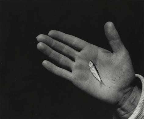 Aaron Siskind - Untitled, 1939 - Howard Greenberg Gallery