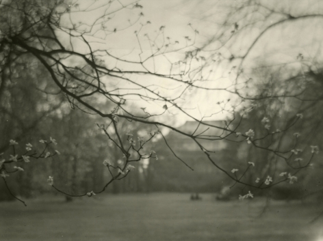 Josef Sudek - Untitled, c.1960 - Howard Greenberg Gallery