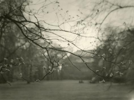 Josef Sudek - Untitled, c.1960 - Howard Greenberg Gallery